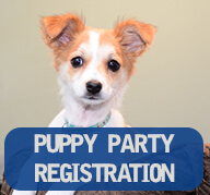Puppy Party Registration