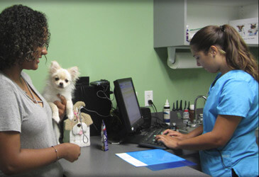 About Pet Care Veterinary Hospital